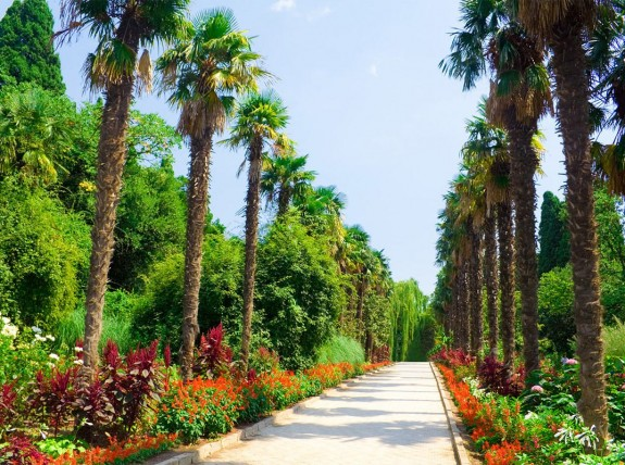 Экскурсия в Никитский ботанический сад